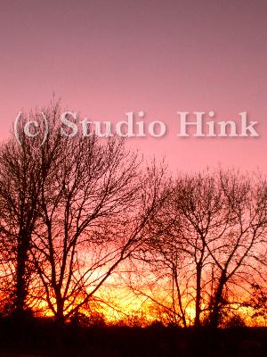 夕焼け 2008-11-26-1.jpg