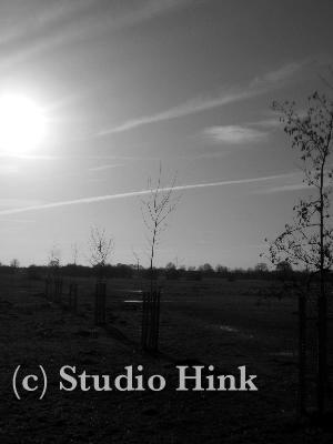 2009-03-05-2.jpg